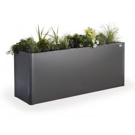 Bac à plantes Belvedere 201x53