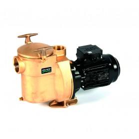 Pompe Bronze Sta-Rite 1CV 400V BRE-3